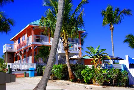 mangos island restaurant
